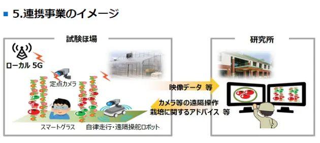NTT東日本など、東京都とローカル5Gを活用した最先端農業の実証へ