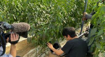 AGRIST、収穫ロボット開発で「大分県IoT推進ラボ認定プロジェクト」認定