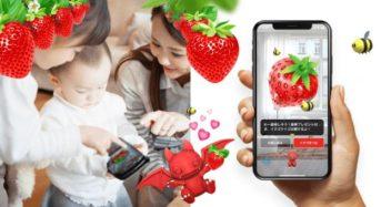 GRAとZEPPELIN、AR拡張現実を活用した自宅で楽しめる「AR非接触イチゴ狩り」を提供