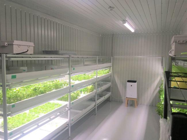 スタートライン、農福連携型・植物工場ファームを大阪府八尾市にオープン