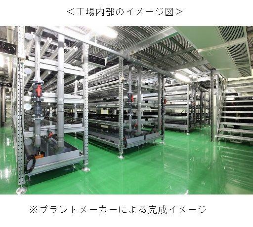 食品メーカーの昭和産業、自社工場を活用して植物工場を稼働