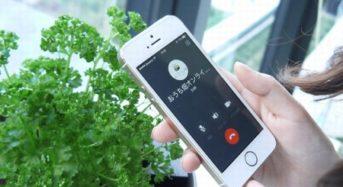 アグリメディア、オンラインで野菜栽培キットの提供から栽培指導までサポート「おうち畑」を開始