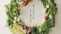 サカタのタネ、園芸愛好家向け通信販売カタログ「家庭園芸2020 夏秋号」を発行
