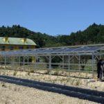 チェンジ・ザ・ワールド、太陽光パネルを融合した次世代ハウスを建設