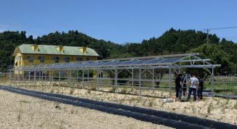 チェンジ・ザ・ワールド、太陽光パネルを融合した次世代・農業用ハウスを建設