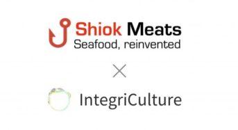 インテグリカルチャー、シンガポールShiok Meats社と「エビ細胞培養肉」の研究開発へ