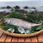 赤穂化成、海洋深層水を使用した「究極の美味・幻の魚、サツキマス」の養殖を開始。9月より出荷も