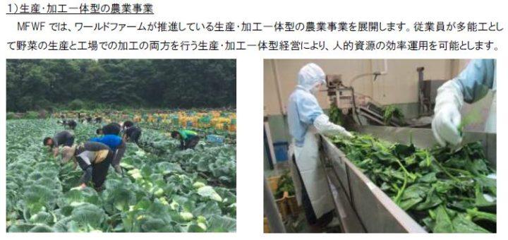 三井不動産とワールドファーム、スマート農業を展開する「三井不動産ワールドファーム」を設立