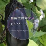 信州大などの産学連携、ナスの普及促進を目的とした「機能性野菜ナスコンソーシアム」を設立