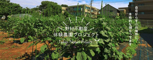 野村不動産とJA世田谷目黒、11月より都市型体験農園サービスを開始