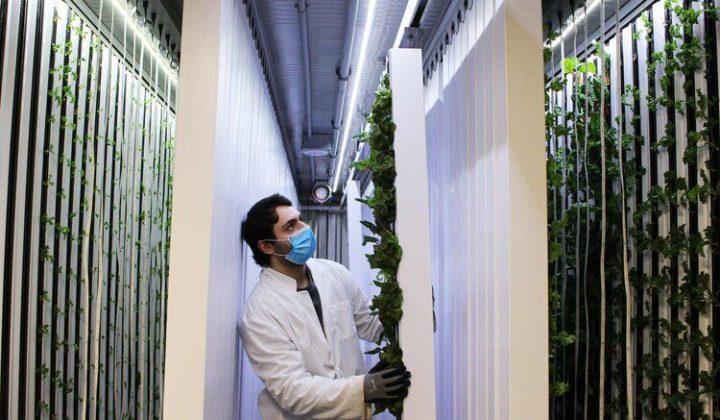 ベルギーUSC社、連結拡張可能なモジュールタイプの自動化・植物工場システムを販売