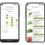 東南アジア産直ECプラットフォーム「Secai Marche」が飲食店向け新機能をリリース
