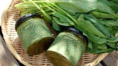国内最大クラスのホウレン草を生産するアグレス、カレーペーストを開発