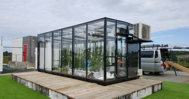 DMMとグリーンリバーHD、太陽光利用型植物工場「Veggie」による水耕栽培装置の実証実験へ