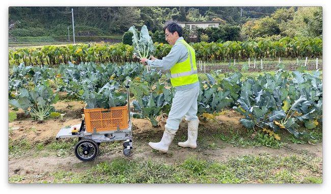アトラックラボ、AIを用い、人に追従する収穫サポートロボットを開発