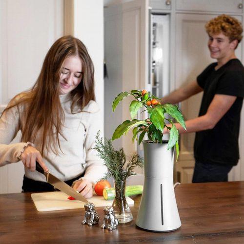 スウェーデンの魅せる水耕プランター「ボタニアム」が全国販売へ