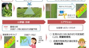 NTT西日本グループ・愛媛大など、汎用ドローン活用と独自分析技術による共同実証へ