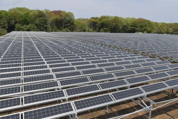西武HD、太陽光発電とブドウ栽培のソーラーシェアリング事業を開始