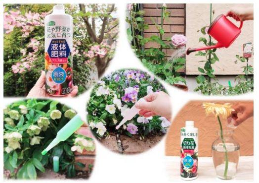 紀陽除虫菊、花・野菜・観葉植物向けの「液体肥料」などを販売