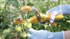 ニチバン、植物の結束誘引など作業負担を軽減。誘引結束機を新発売