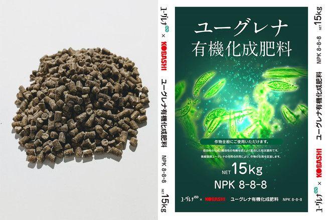 微細藻類ユーグレナを使用した肥料、収穫量の増加・作物鮮度の低下を抑制する可能性を示唆